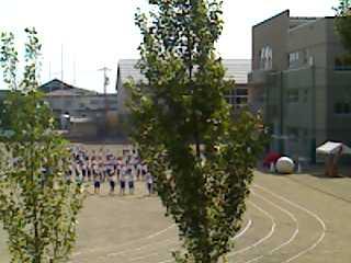 11-09-08_0929.jpg