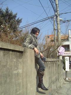 ロブ塀の上