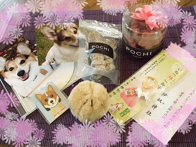 たくさんのプレゼント☆