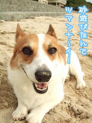 砂遊びなんてつまんな~い