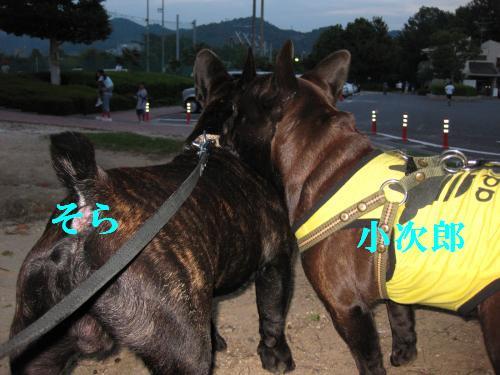 m1532_convert_20081005180123.jpg