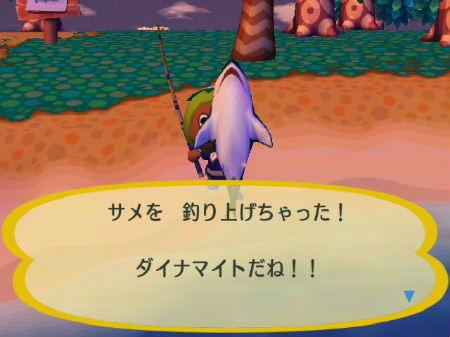 2009_0811お盆前0041