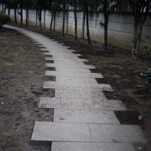 20120219_17.jpg