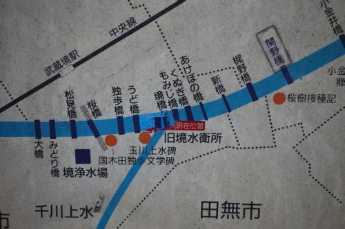 20120219_7.jpg