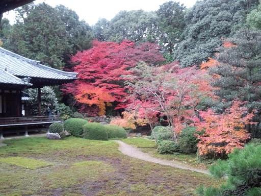 京都201112-2