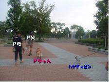 35-8.jpg