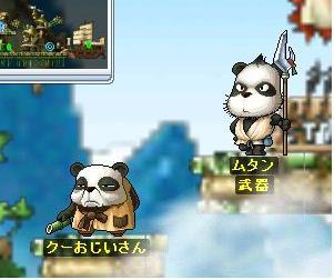 35 パンダたちめ('こんな名前だったか('