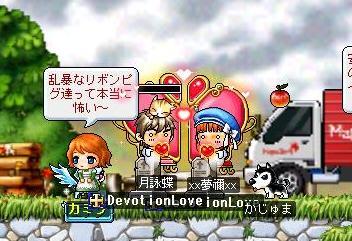 Maple0005_20090206101026.jpg