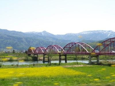 飯山市の菜の花畑
