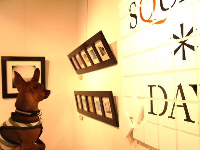 アクアと写真展 「toms photo gallery SQUARE*DAYS」