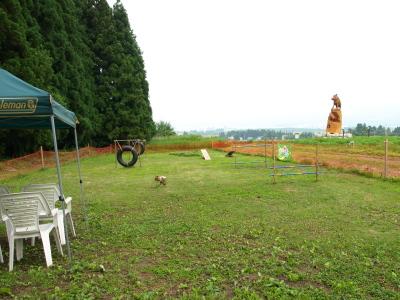 猪苗代ハーブ園のドッグラン