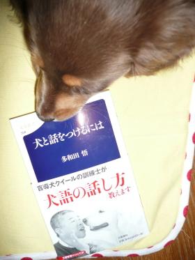 あたちも読むの?