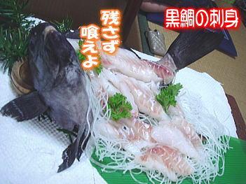 11.6黒鯛