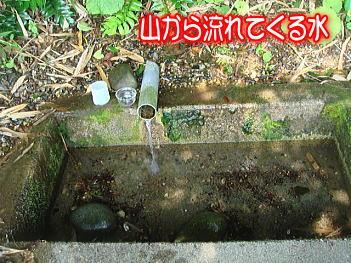 11.6湧き水