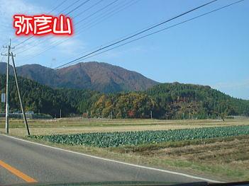 11.16弥彦山へ