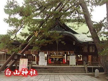 12.5神社
