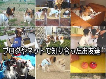 12.29ブログのお友達