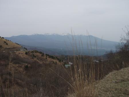 20090505-4.jpg