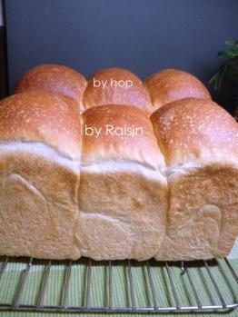 20120225山食byホップvsレーズン酵母