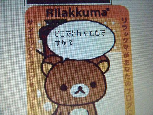2009_0226ブログ0001