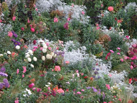 シャンゼリゼ通りの花畑