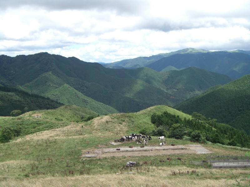 大野ヶ原2008年8月10日撮影