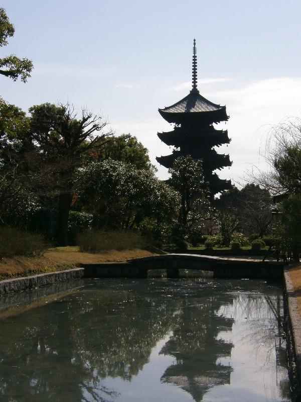 京都 東寺 白サギ