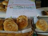 パン試作 051