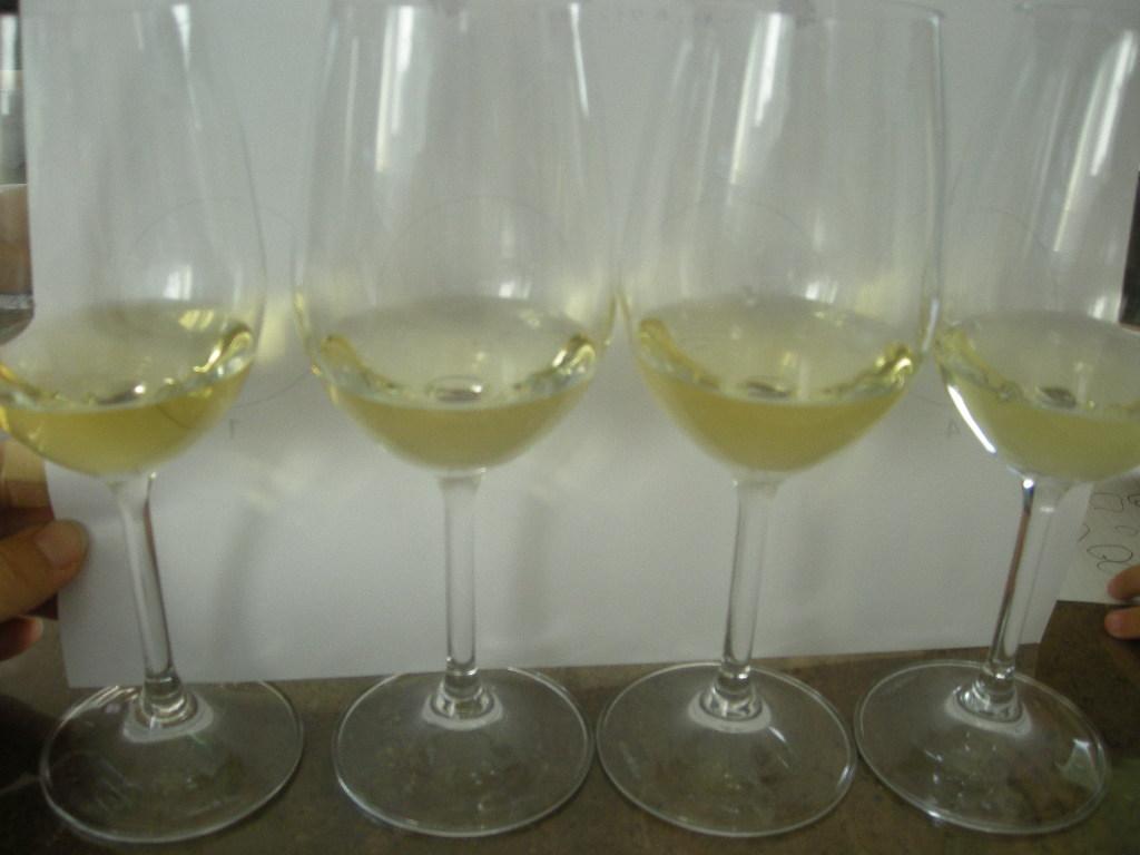 ワインとチーズの講座 009