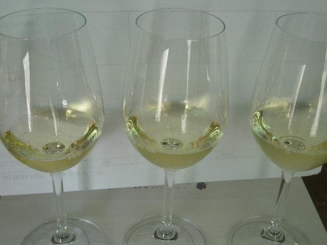 vino bianco 002