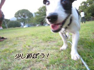 080911の映像 031_u320