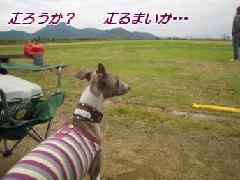 081109 ウイOF会 053_u400