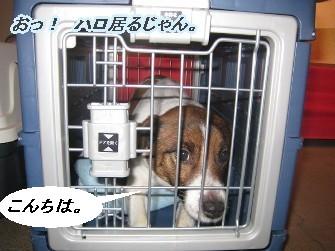 090207福岡へ画 199