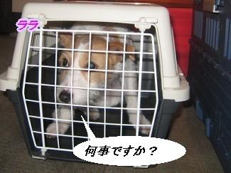 090207福岡へ画 200