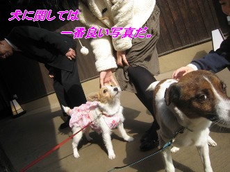 090207福岡へ画 205
