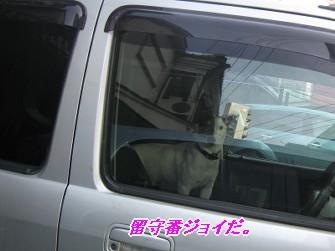 090207福岡へ画 386