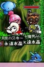 Maple0003709 (4)