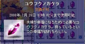 Maple000265.jpg