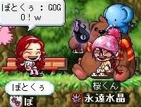 Maple0009618.jpg