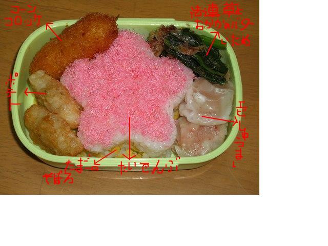snap_sakuradoremi_2008101162618.jpg