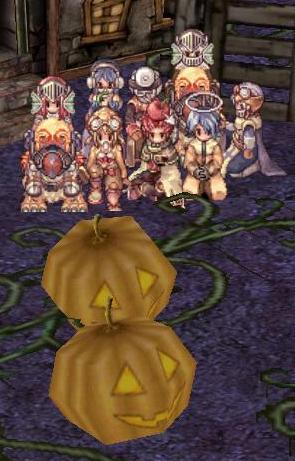 かぼちゃ畑で・・・