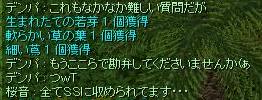SS撮ってますヽ(´▽`)/