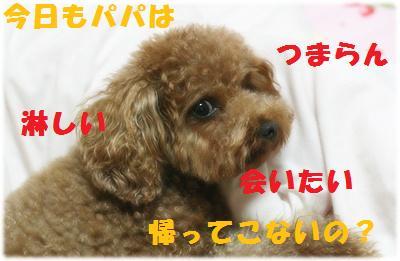 IMG_4579[2]