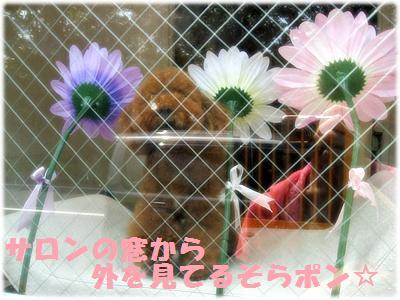 IMG_5800[2]