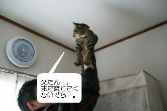 200904058.jpg