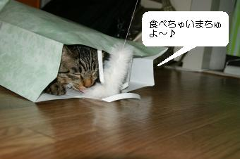 20090406_4.jpg