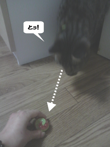20090415_3.jpg