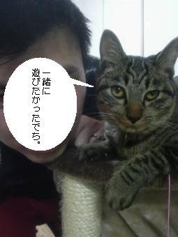 20090418_2.jpg