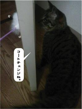 200905015.jpg