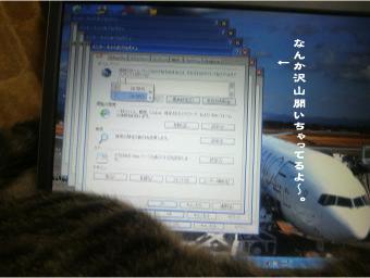 2009051505.jpg